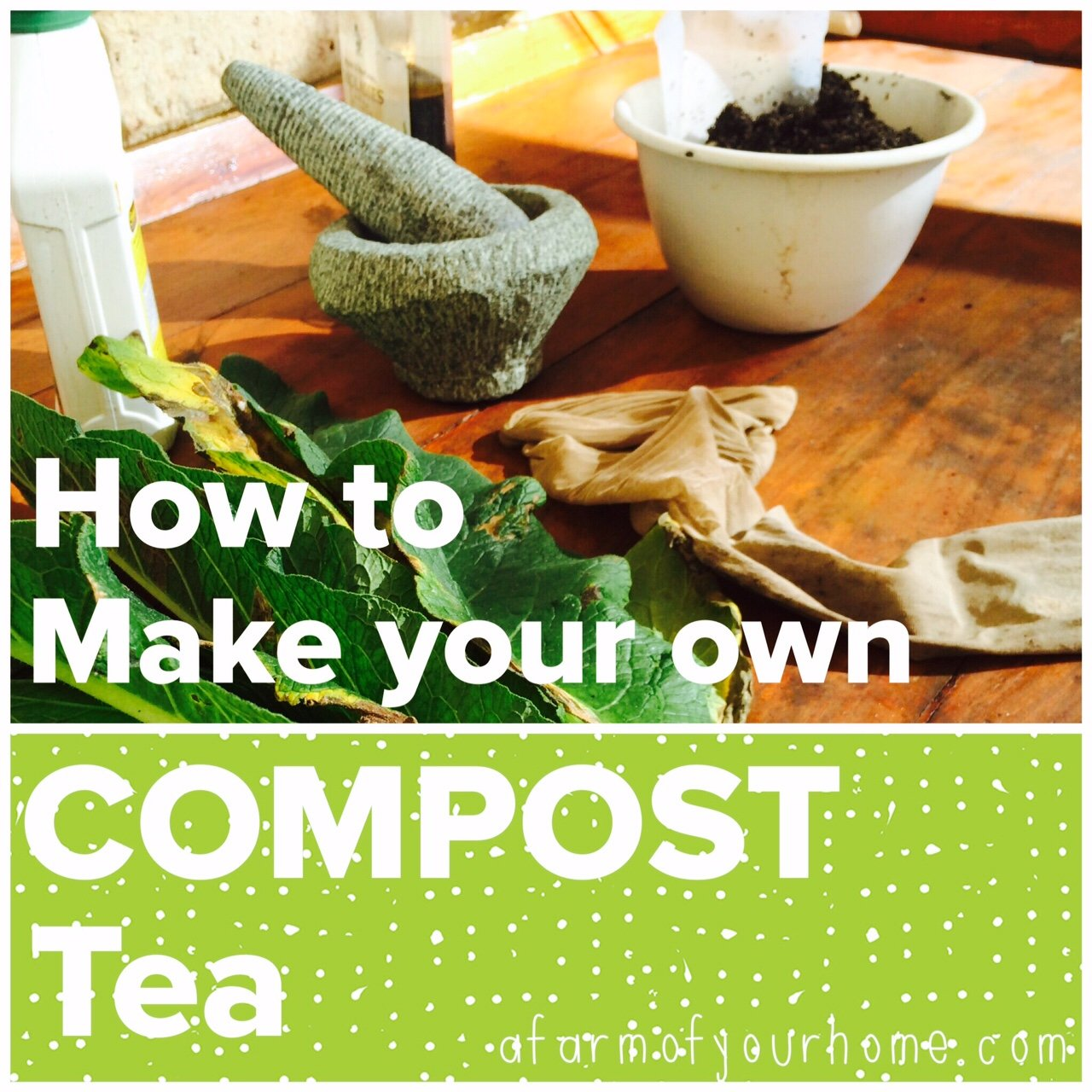 Brewing Your Own Compost Tea