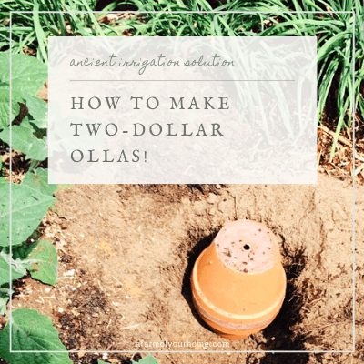 How To Make Two Dollar Ollas