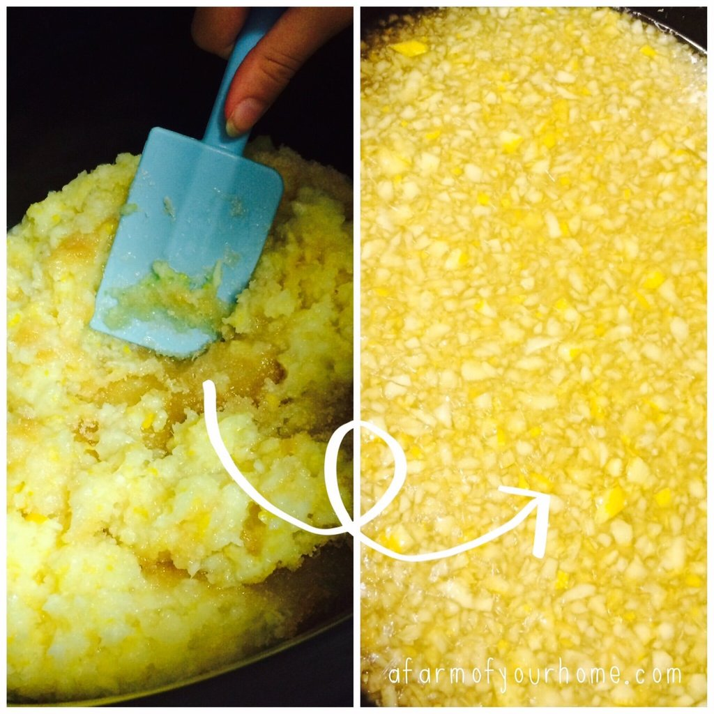 Nans Lemon Cordial_lemon mix_AFOYH_20151116
