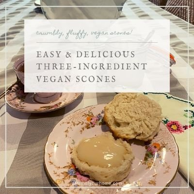 Easy Three-Ingredient Vegan Scones