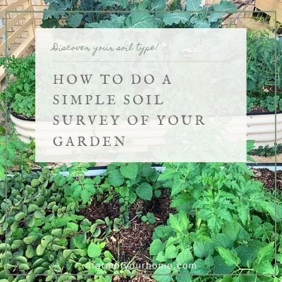 How to Do A Simple Soil Survey of Your Garden